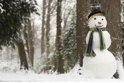snowman in saudi arabia banned by muslim scholar