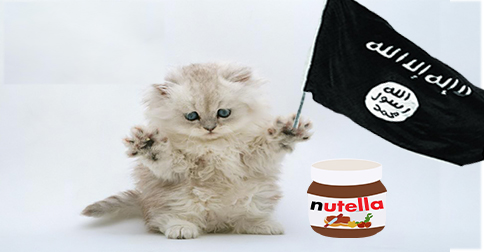isis, kittens and nutella