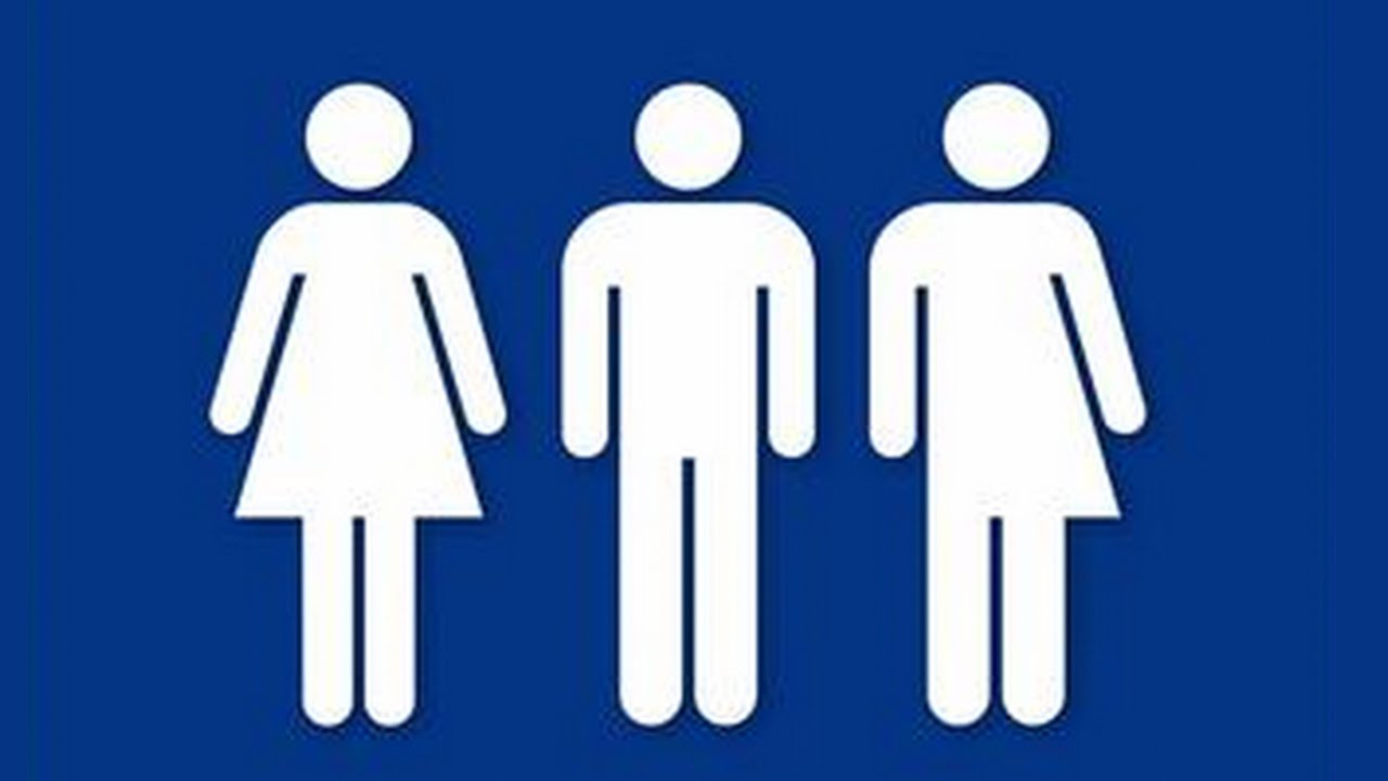 female com woman male and cabinets toilet icons restroom man sign vector thedancingparent bathrooms symbol bathroom